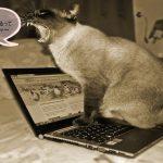 インターネットビジネスを挫折させない秘密~『簡単に稼げるは嘘』~